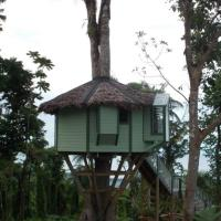 One-Bedroom Treehouse