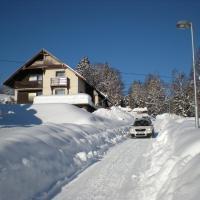 Hotel Pictures: Pension Slunce, Dolni Dvur