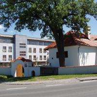 Hotel Pictures: Hotel Meritum, Prague