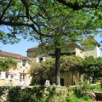 Hotel Pictures: La Theroniere, Prayssac