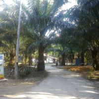 Sweet Dream Resort
