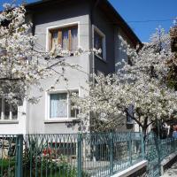 Fotos del hotel: Guest House Minkovi, Tryavna