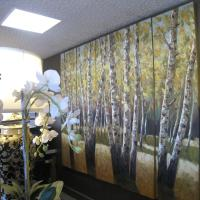 Hotel Pictures: Country Lodge Motor Inn, Bathurst
