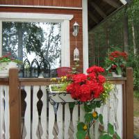 Hotel Pictures: Karelian Lomatuvat, Parikkala