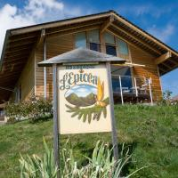 Hotel Pictures: Bed & Breakfast l'Epicéa, Leysin