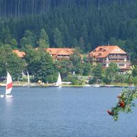 Hotel Pictures: Auerhahn Wellnesshotel, Schluchsee