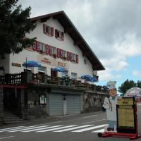 Hotel Pictures: Hôtel Restaurant Wolf, Markstein