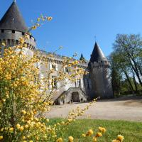 Hotel Pictures: Chambres d'Hôtes Chateau de la Borie Saulnier, Champagnac-de-Bélair