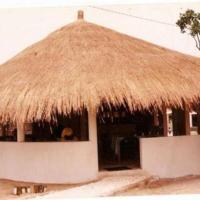 Φωτογραφίες: Ndimack du saloum, Ndangane