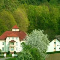 Hotelbilleder: Pension am Walde, Beerfelden