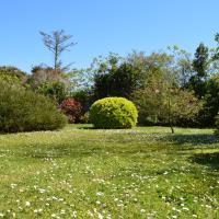 Studio Triple with Garden View