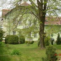 Hotel Pictures: Pension U Václava, Janov