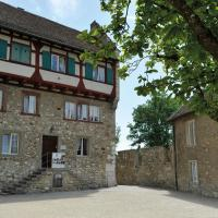 Hotel Pictures: Dachsen am Rheinfall Youth Hostel, Dachsen