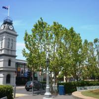 Hotel Pictures: Australian Home Away @ Moonee Ponds, Melbourne