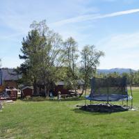 Mongolian yurt, 2-3 persons