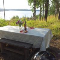 Hotel Pictures: B&B Pinus, Mäntyharju