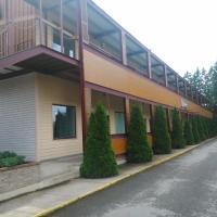 Hotel Pictures: Männimäe Guesthouse, Viljandi