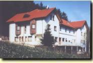 Waldhotel Bellevue