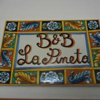 B&B La Pineta