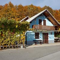 Vineyard Cottage Meglic