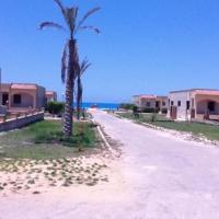 Hotel Pictures: Apartments at Marina Engineers North Coast, El Alamein