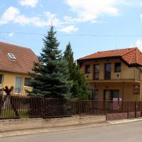 Dom Petra