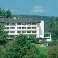 Hotel Pictures: FitalHotel, Höchenschwand