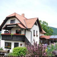 Hotel Pictures: Ferienwohnung Panorama, Rauenstein