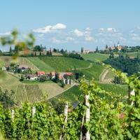 Hotellbilder: Weingut Schauer, Kitzeck im Sausal