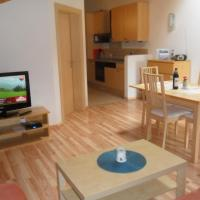 Superior Apartment with Balcony (2-6 Adults)