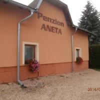 Hotel Pictures: Penzion Aneta, Svijany