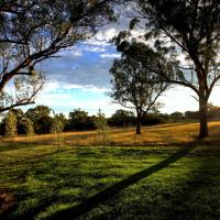 Hotel Pictures: Alpine Lodges, Stanthorpe