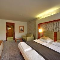 Superior Double Room with Spa Package