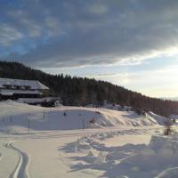 Hotel Pictures: chalet du Soulor, Arrens-Marsous
