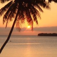 Fotografie hotelů: Havannah Blue, Port Vila