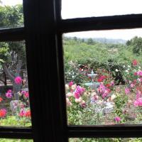 Hotel Pictures: Casa Mortero, Icod de los Vinos