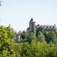 Hotel Pictures: Les Chambres d'Hôtes du Chateau, Salles-Curan