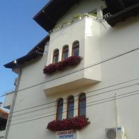 Hotel Pictures: Family Hotel Salvia, Berkovitsa