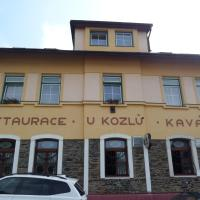 Hotel Pictures: Pension Kozel, Ricany