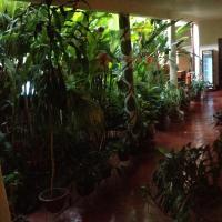 Hotel Pictures: Hotel Morgan, Guaduas