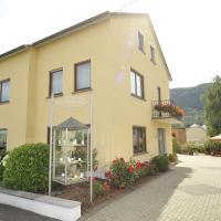 Hotelbilleder: Homestay Öko-Weingut Roman Herzog, Minheim