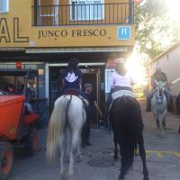 Hotel Pictures: Hostal Junco Fresco, Zarza de Granadilla