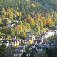 Hotel Pictures: Ferienwohnung Domm, Bad Wildbad