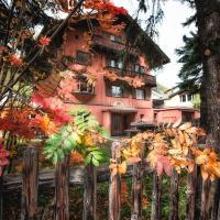Hotel Pictures: Chalet Speciale, Celerina