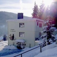 Hotel Pictures: Pension Am Waldesrand, Ilmenau