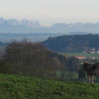 Hotelbilleder: Ferienwohnung Altusried, Altusried