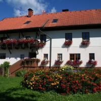 Hotel Pictures: Pension Bauerborchardt, Wernberg