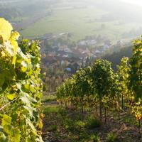 Hotelbilleder: Weingut Hees - Landgasthof Zum Jäger aus Kurpfalz, Auen