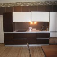 Large One-Bedroom Apartment with Balcony (3 Adults)