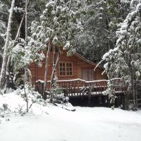 Hotel Pictures: Cabaña Rustica Patagonia Chilena, Coñaripe